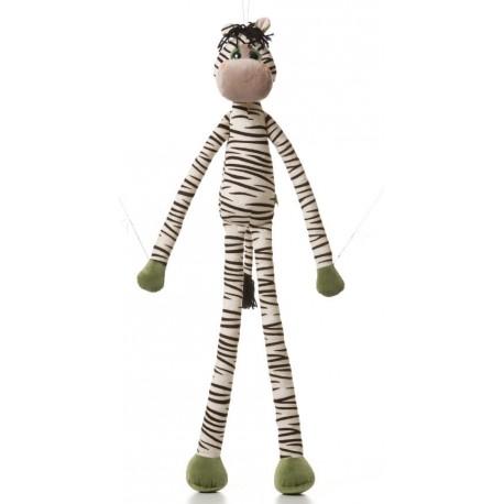 Zebra z Safari